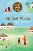 Spilled Water (eBook, ePUB)