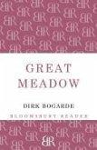 Great Meadow (eBook, ePUB)