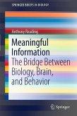 Meaningful Information (eBook, PDF)