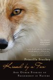Kissed by a Fox (eBook, ePUB)