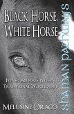Shaman Pathways - Black Horse, White Horse (eBook, ePUB)