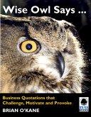 Wise Owl Says ... (eBook, ePUB)