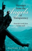 Messages from the Angels of Transparency (eBook, ePUB)