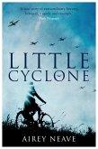 Little Cyclone (eBook, ePUB)