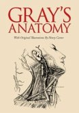 Gray's Anatomy (eBook, ePUB)