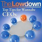 Lowdown: Top Tips for Wannabe CEOs (eBook, ePUB)