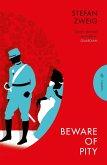 Beware of Pity (eBook, ePUB)