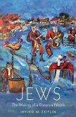 Jews (eBook, ePUB)