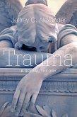 Trauma (eBook, PDF)