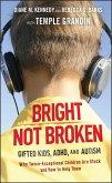 Bright Not Broken (eBook, ePUB)