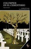 Columpios en el cementerio (eBook, ePUB)