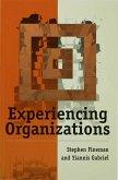Experiencing Organizations (eBook, PDF)