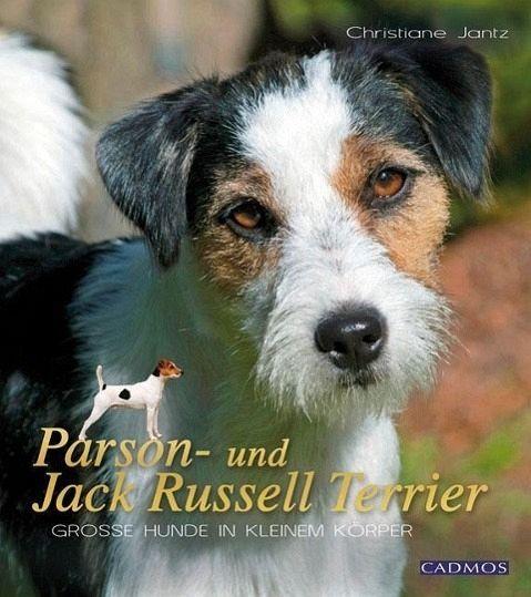 Parson- und Jack Russel Terrier - Jantz, Christiane