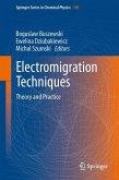 Electromigration Techniques (eBook, PDF)
