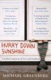 Hurry Down Sunshine (eBook, ePUB)