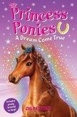 Princess Ponies 2: A Dream Come True (eBook, ePUB)