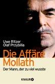 Die Affäre Mollath (eBook, ePUB)