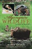 Algonquin Wildlife (eBook, ePUB)