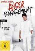 Anger Management - Staffel 1 - 2 Disc DVD