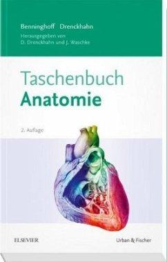 Benninghoff Taschenbuch Anatomie - Benninghoff, Alfred