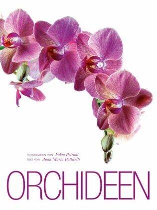 orchideen von fabio petroni anna m botticelli buch. Black Bedroom Furniture Sets. Home Design Ideas
