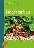 Erdbeeranbau (eBook, PDF)