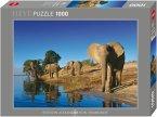 Thirsty Elephants (Puzzle)