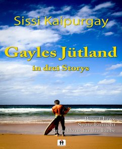Gayles Jütland in 3 Storys (eBook, ePUB)