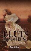 Zeit der Finsternis / Blutsdämmerung Bd.2 (eBook, ePUB)