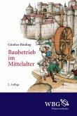 Baubetrieb im Mittelalter (eBook, PDF)