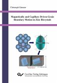 Magnetically and Capillary Driven Grain Boundary Motion in Zinc Bicrystals