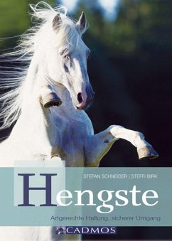 Hengste (eBook, ePUB)