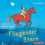 Fliegender Stern (MP3-Download)