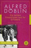 Die beiden Freundinnen und ihr Giftmord (eBook, ePUB)