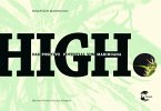 HIGH (eBook, ePUB)