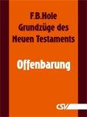 Grundzüge des Neuen Testaments - Offenbarung (eBook, ePUB)