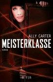 Meisterklasse (eBook, ePUB)