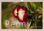 Peony (Wandkalender immerwährend DIN A4 quer)