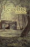 Leuchte: Kinzigtal-Trilogie 1 (eBook, ePUB)
