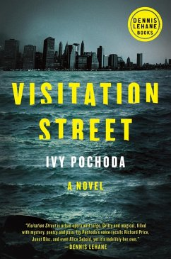 Visitation Street (eBook, ePUB) - Pochoda, Ivy
