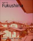 Fukushima (eBook, ePUB)