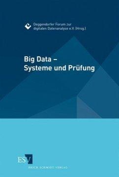 Big Data - Systeme und Prüfung