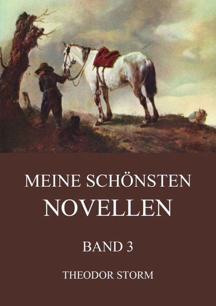 Meine schönsten Novellen, Band 3 (eBook, ePUB) - Theodor Storm