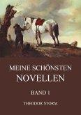 Meine schönsten Novellen, Band 1 (eBook, ePUB)