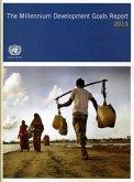 The Millennium Development Goals Report 2013