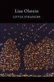 Little Stranger (eBook, ePUB)