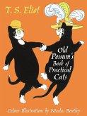 The Illustrated Old Possum (eBook, ePUB)