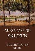 Aufsätze und Skizzen (eBook, ePUB)