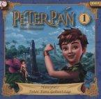 Peter Pan - Hausputz / Peter Pans Geburtstag, 1 Audio-CD