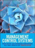 Management Control Systems: European Edition